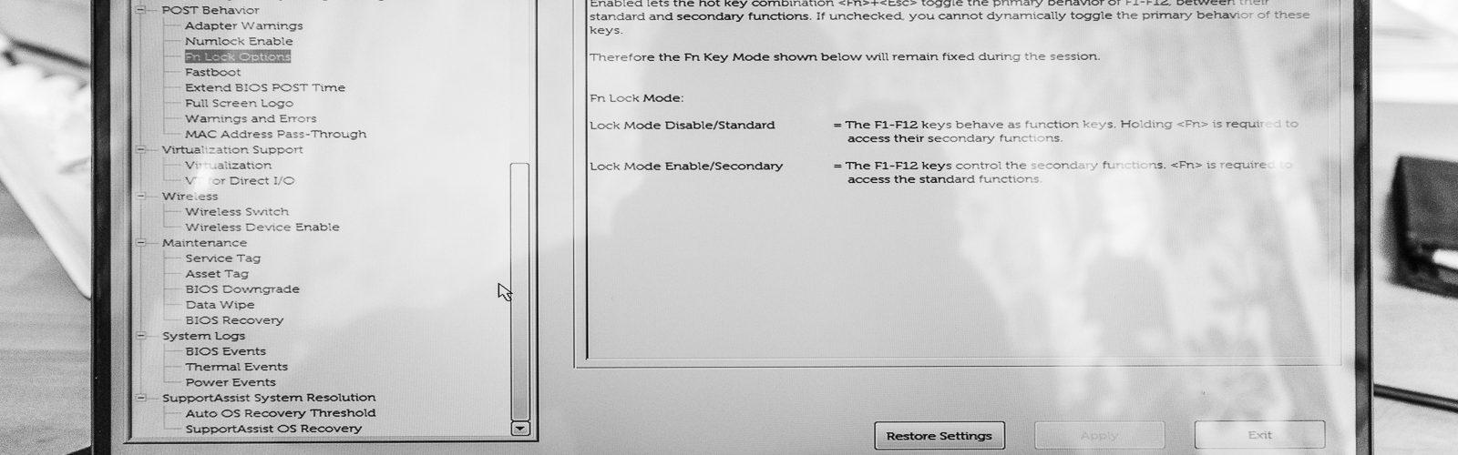 Dell XPS 13 Bios
