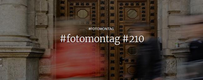 #fotomontag #210